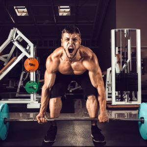 La suplementación deportiva para ganar fuerza la suplementación para las ganancias de fuerza 2 2